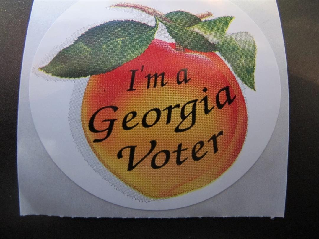Group File Voting Rights Suit GA Election Law