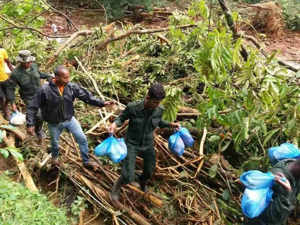 Sri Lanka's flood survivors at risk of dengue, disease - aid workers