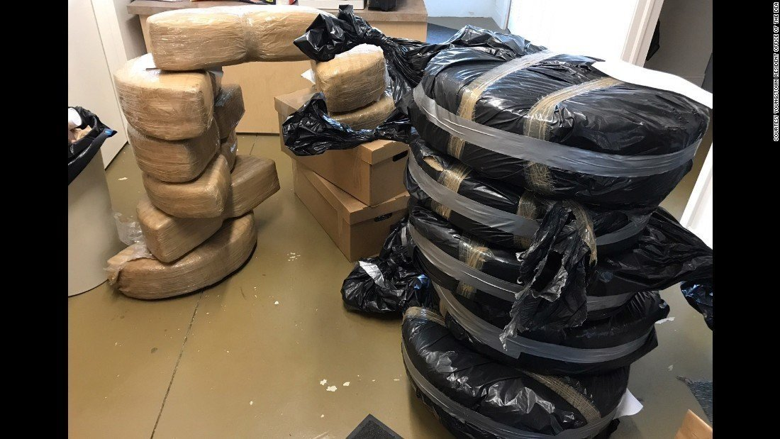 Packed marijuana found inside Ford Fusions at a dealership in Ohio.