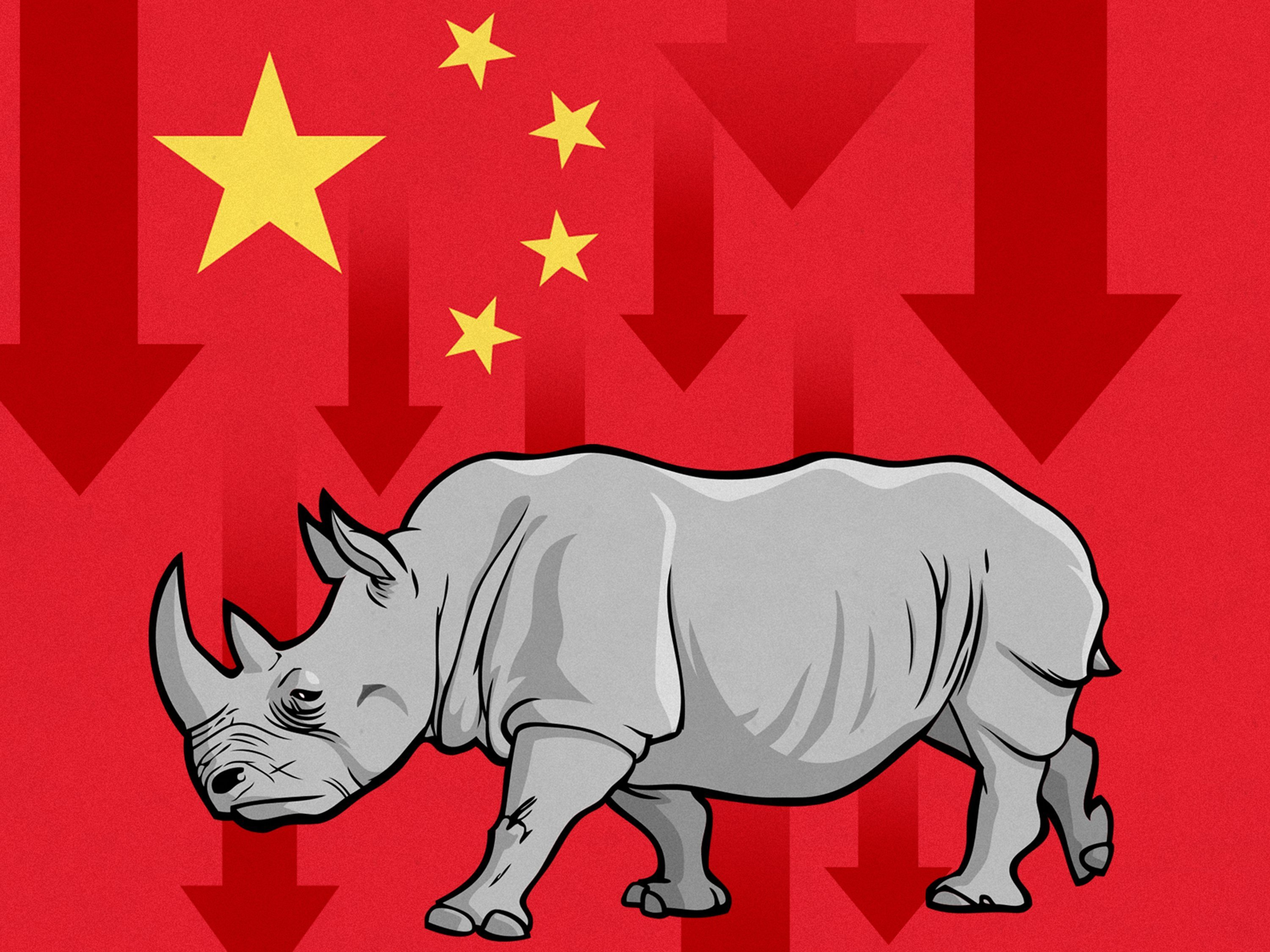 """Many investors lose sleep over """"black swans"""" -- hard-to-predict events that cause chaos, like terror attacks or the bursting of the dot-com bubble. Now authorities in China are being urged to watch for """"gray rhinos"""" -- obvious dangers that are often..."""