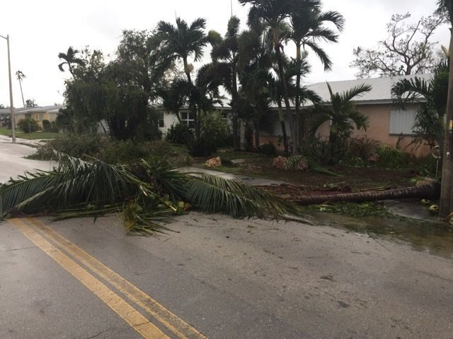 Six patients at Florida nursing home die in aftermath of Hurricane Irma