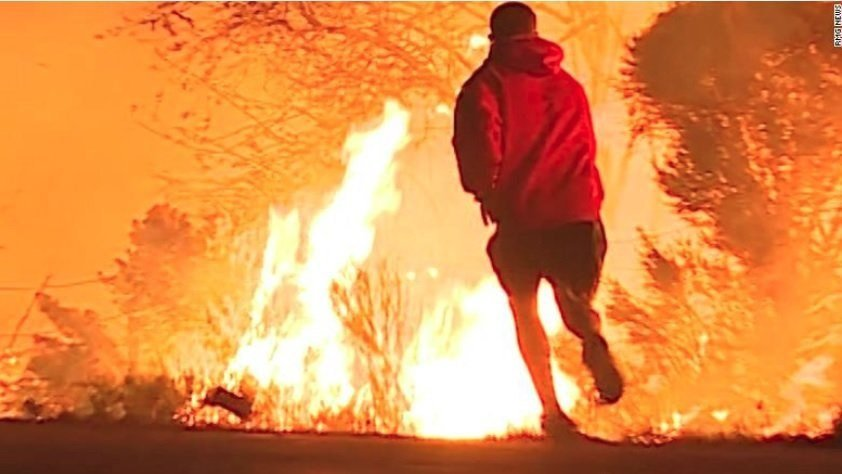 Video of the daring rescue shows a Ventura County highway engulfed in smoke and flames as a man stops on the road as he sees a rabbit jumping into the fire and awaits him to come out as he saves him.