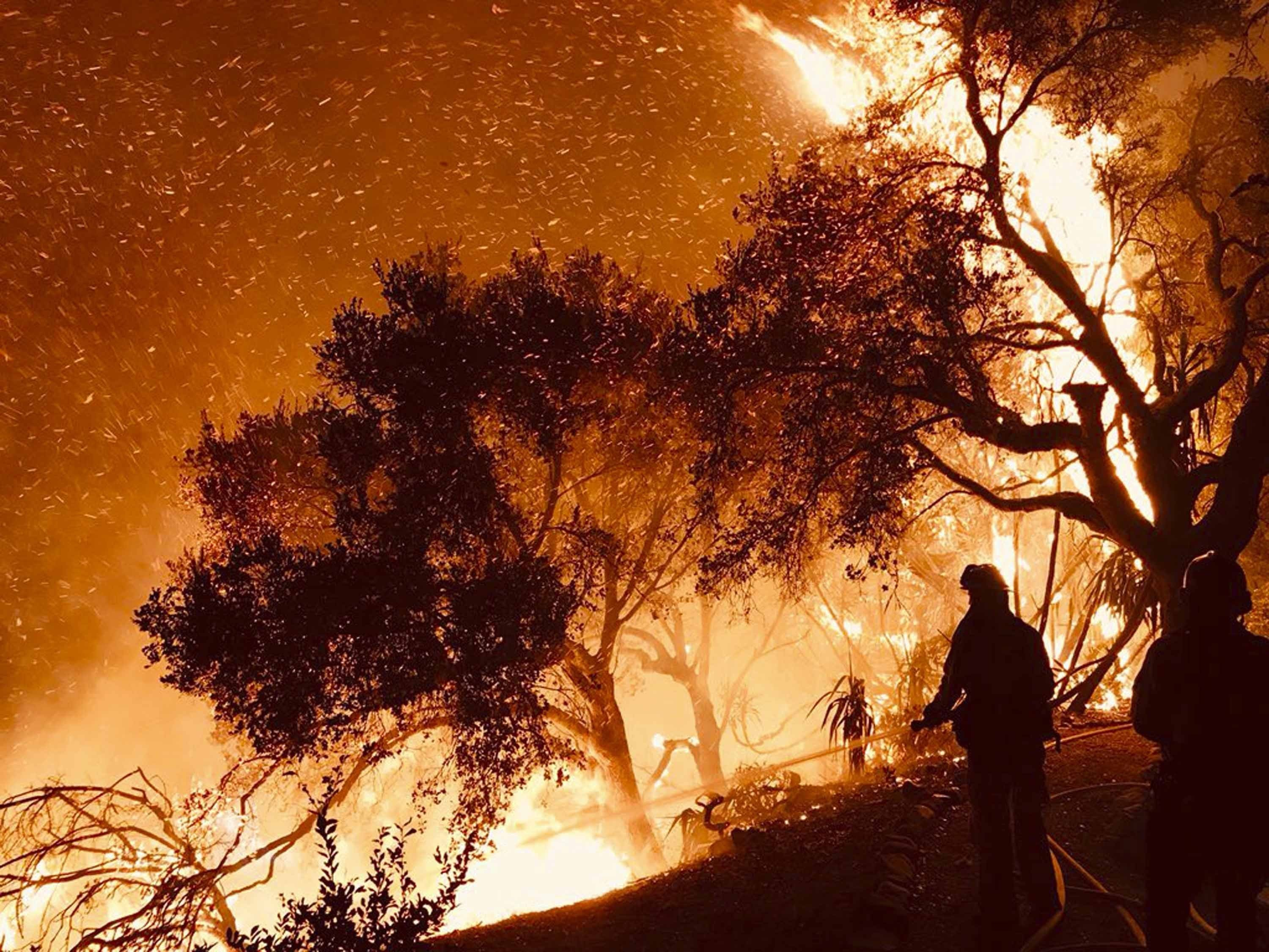 **This image is for use with this specific article only**  In this photo released by the Santa Barbara County Fire Department on Sunday, December 10, firefighters battle a wildfire as it advances on homes in Carpinteria, California. Powerful Santa Ana...