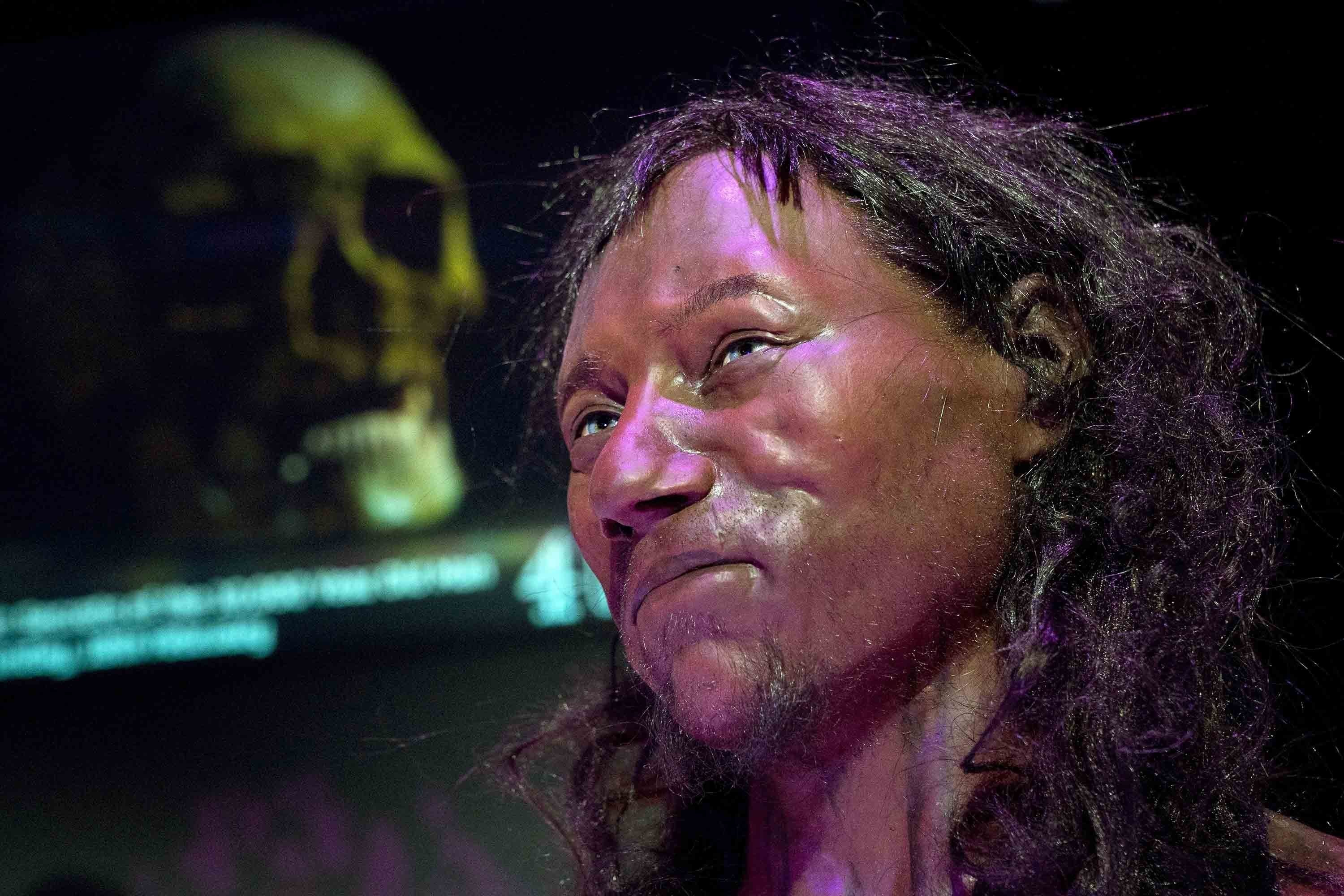 A facial reconstruction made from the skull of a 10,000 year old man, known as 'Cheddar Man.'
