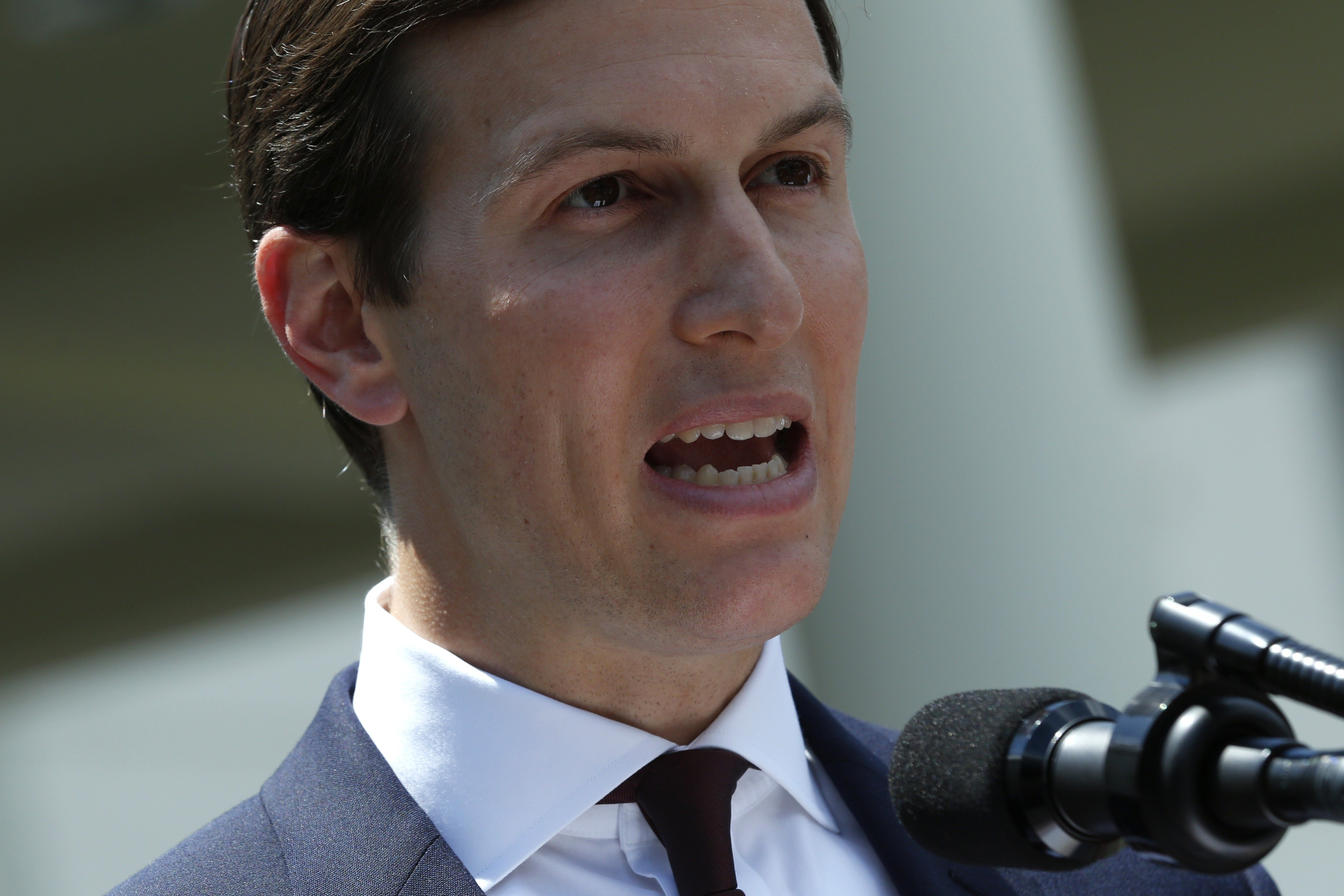 Several officials -- including Kushner -- have also made various paperwork errors while filling out forms required as part of the check.