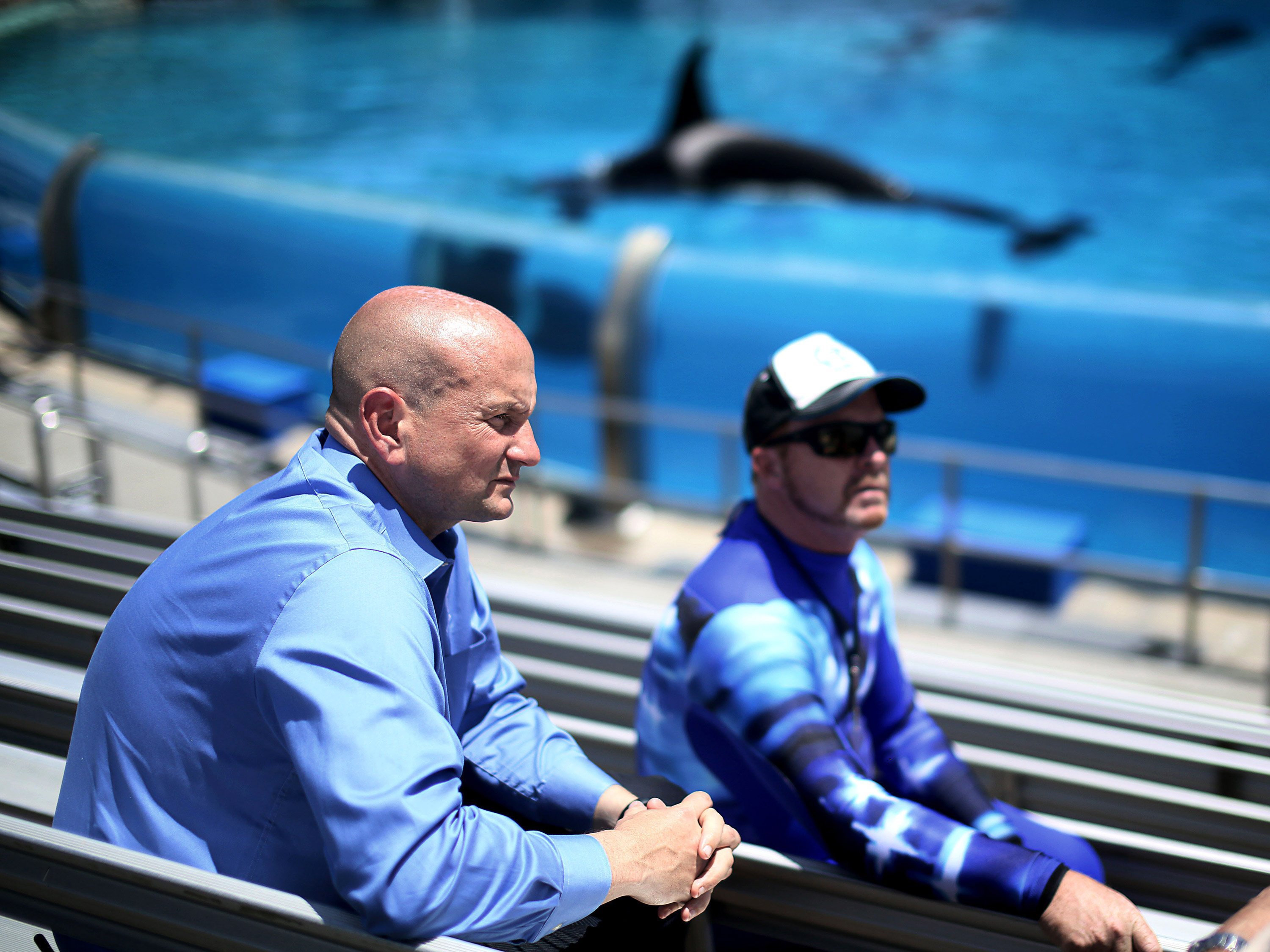 SeaWorld CEO suddenly out as theme park attendance wanes