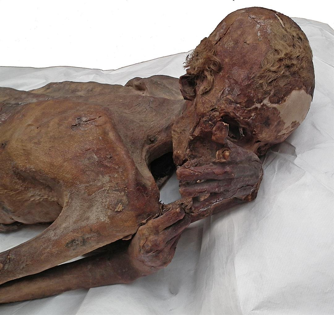 World's oldest figural tattoos discovered on 5000-year-old Egyptian mummies