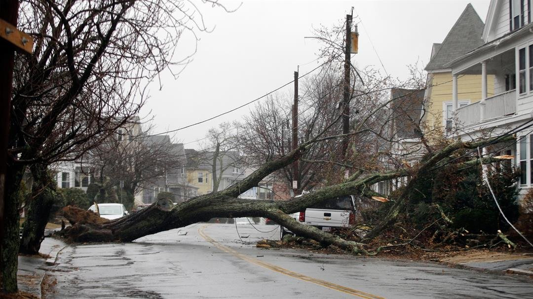 An uprooted tree that took down a power line on Friday, March 2, 2018, blocks a street in Swampscott, Massachusetts.