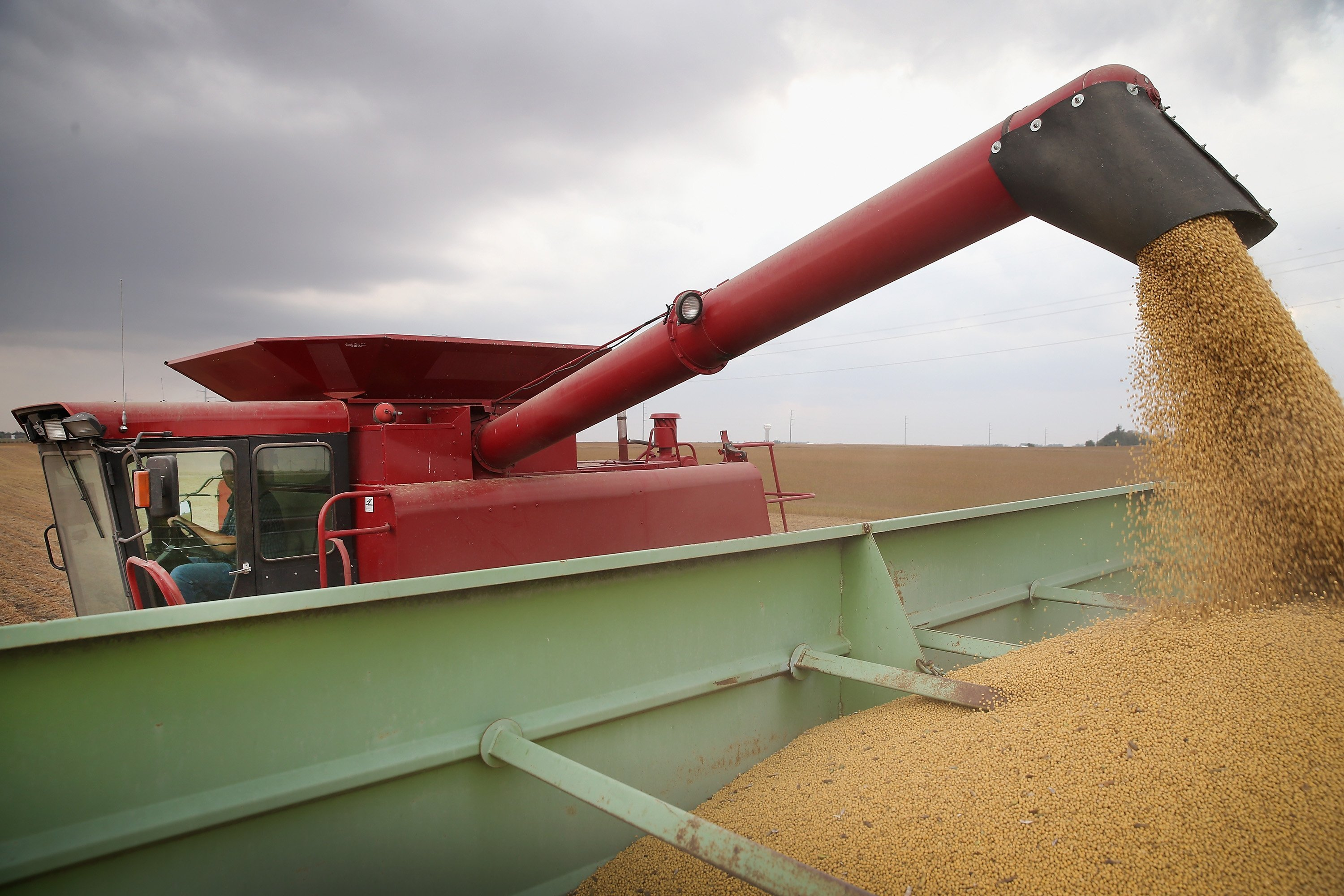 Chinese tariffs could impact NJ soybean crop