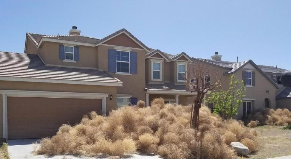 California Community Pleads For Help After Tumbleweeds Take Over Town