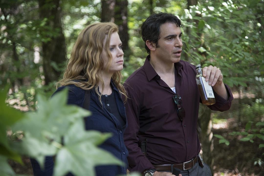 """Sharp Objects"" transparently wants to be this year's ""Big Little Lies,"" from its movie-star lead (Amy Adams) to the gauzy, washed-out tones and flashbacks employed by Jean-Marc Vallee, who directed both."