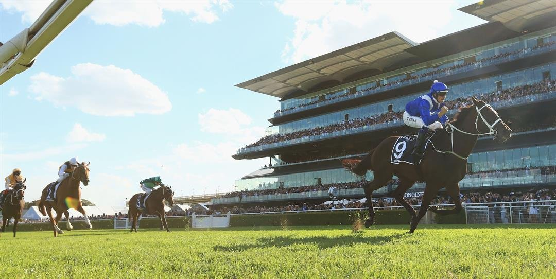 She's the superstar of Australian racing, but Winx is also rated No.1 worldwide after she retained top spot in the Longines World's Best Racehorse Rankings.