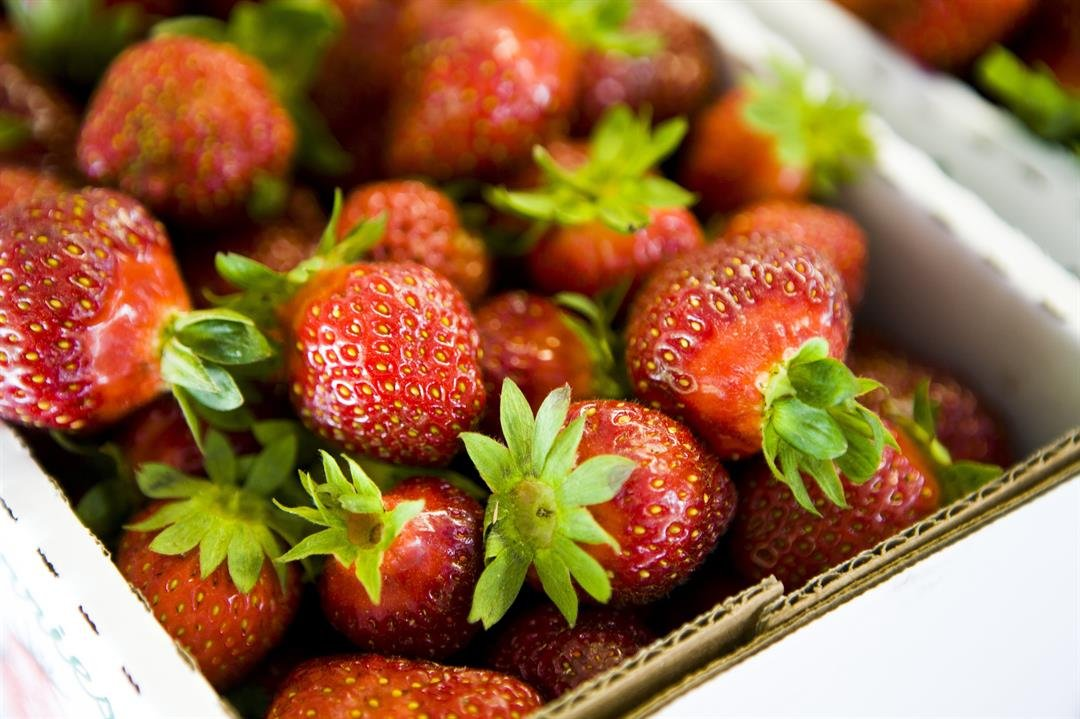 An outbreak of hepatitis A caused by imported frozen strawberries from Egypt has sickened 55 people in six states, the US Centers for Disease Control and Prevention said Wednesday. Health authorities confirmed 44 total infections in Virginia, where the...