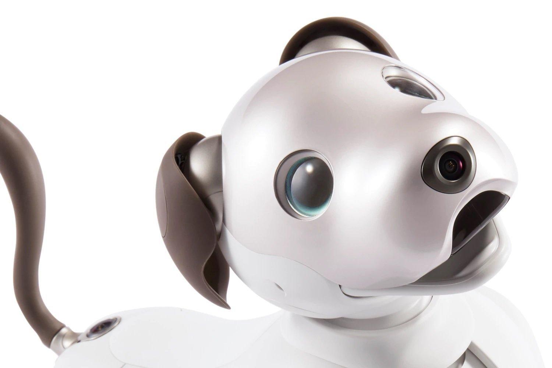 Hasil gambar untuk Sony's Aibo Resurrected From Robot Pet Cemetery